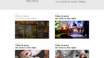 5 news 1 i gabbiani cut