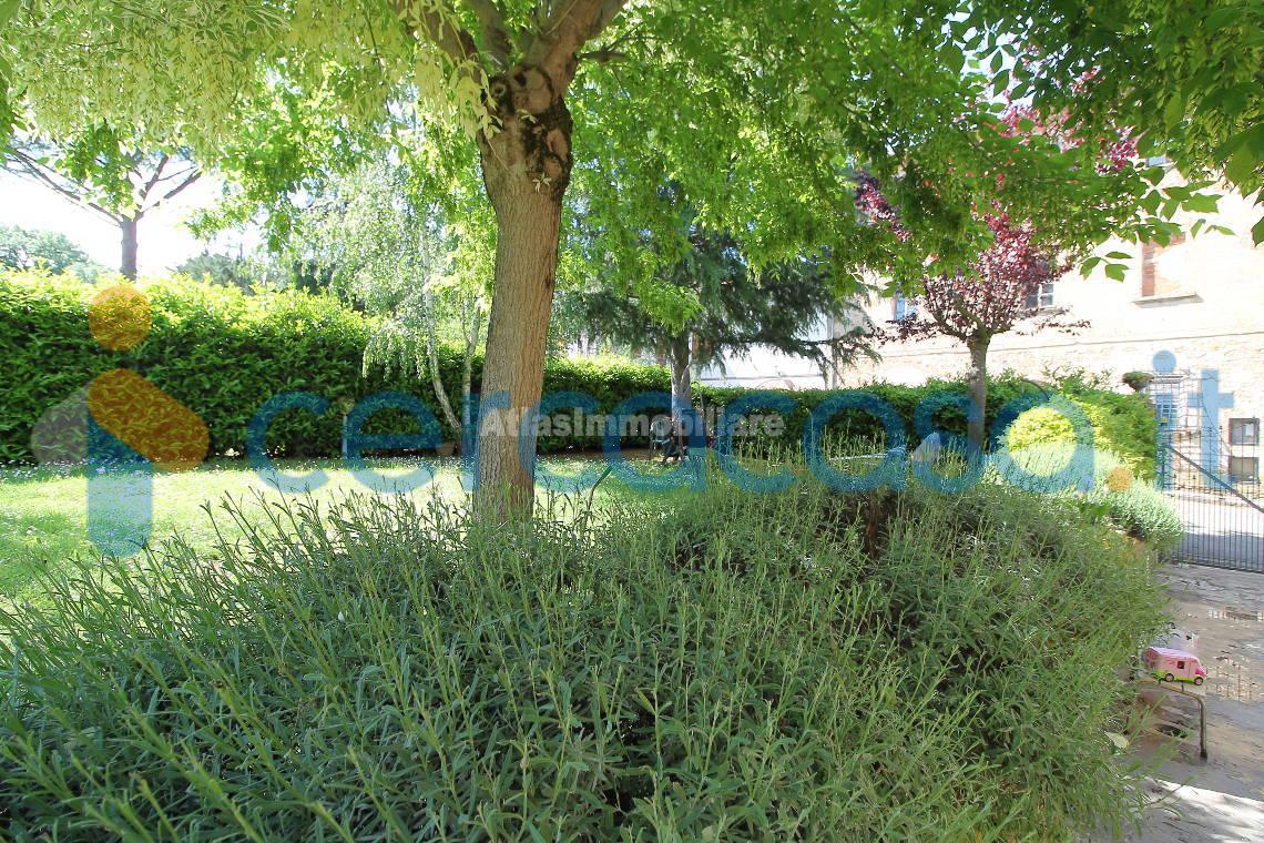 _giardino